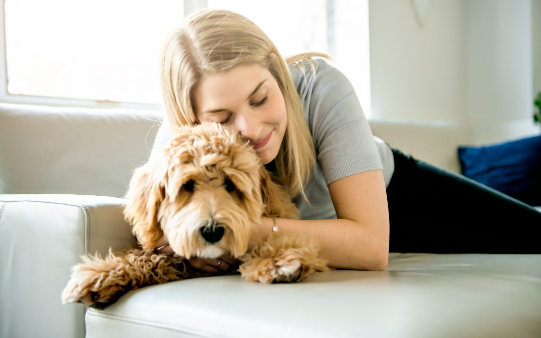 Confessions of a Dog-Loving Neat Freak